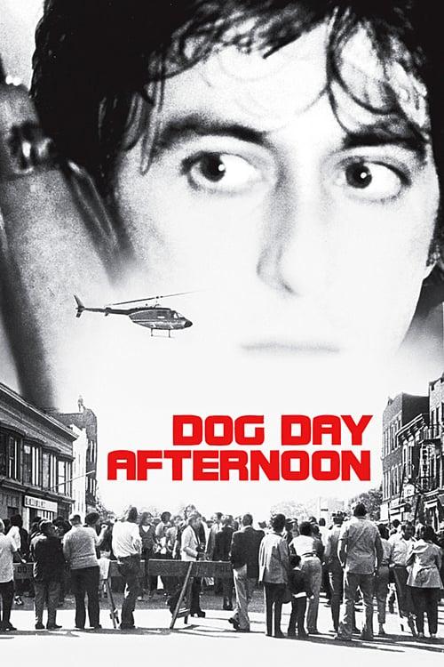 دانلود فیلم Dog Day Afternoon 1975 با دوبله فارسی