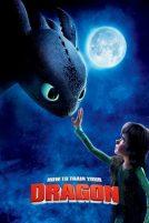 دانلود انیمیشنHow to Train Your Dragon 2010 با دوبله فارسی