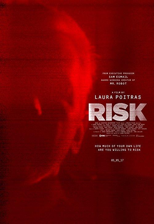 دانلود فیلم Risk 2016 با دوبله فارسی