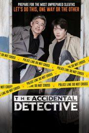 دانلود فیلم The Accidental Detective 2015 با دوبله فارسی
