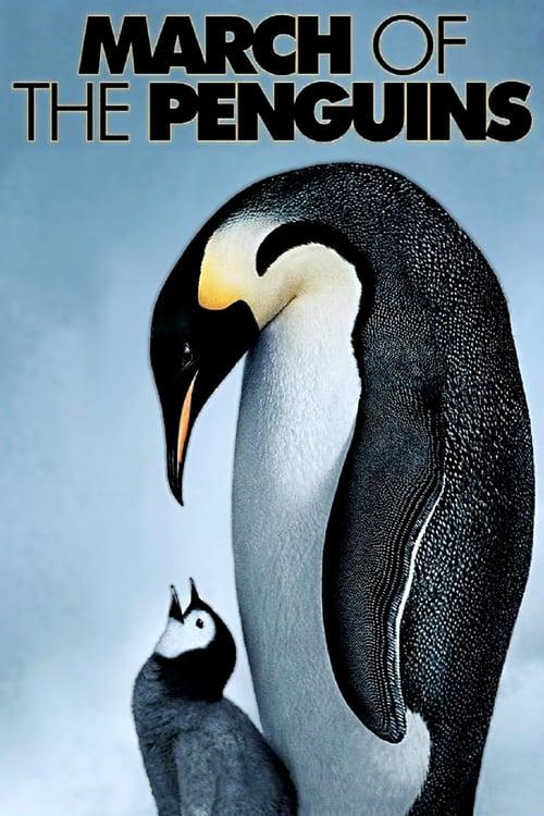 دانلود فیلمMarch of the Penguins 2005 با دوبله فارسی