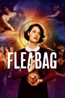 دانلود سریال Fleabag