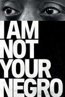 دانلود فیلم I Am Not Your Negro 2016 با دوبله فارسی