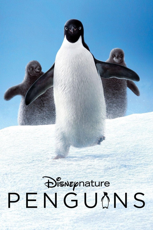 دانلود فیلم Penguins 2019