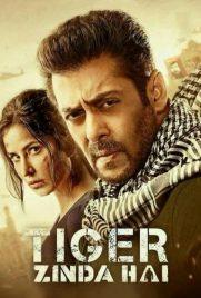 دانلود فیلم Tiger Zinda Hai 2017 با دوبله فارسی