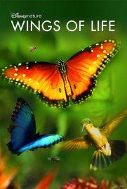 دانلود فیلم Disneynature: Wings of Life 2011 با دوبله فارسی