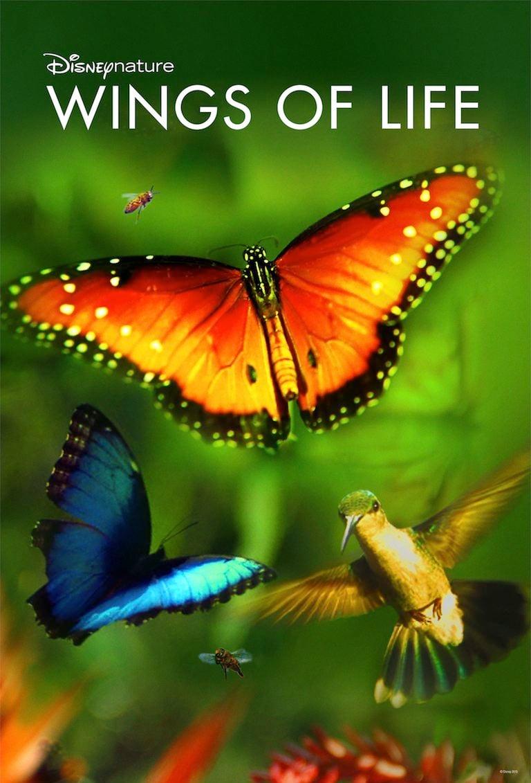 دانلود فیلمDisneynature: Wings of Life 2011 با دوبله فارسی